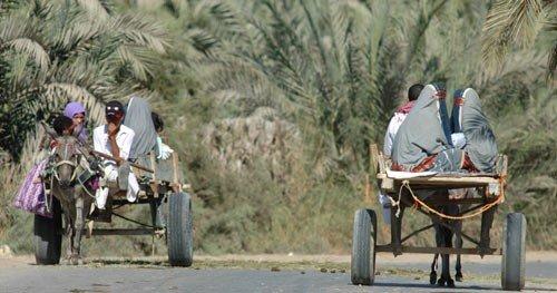 siwan-woman-two-carts